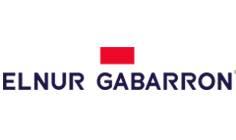 Elnur logo